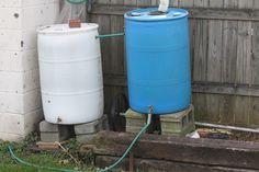 The Redeemed Gardener: Maintaining A Healthy Rain Barrel