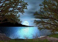 Pines & moon on lake
