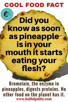 you eat pineapple, it eats you back! Want more cool facts?When you eat pineapple, it eats you back! Want more cool facts? Healthy Facts, Healthy Nutrition, Healthy Eating, Healthy Protein, Fun Health Facts, Health Tips, Gut Health, Healthy Meals, Healthy Life