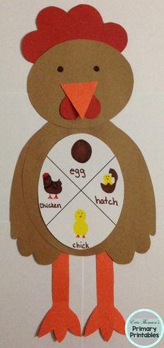 Chicken life cycle craft ~ egg, hatch, chick, chicken