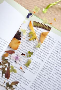Gorgeous homemade bookmarks with preserved leaves and flowers.