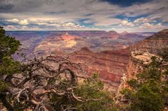 Canyon - One from my early days of photography in 2009.  Thanks for looking!