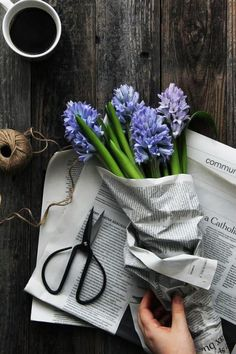 grace-hollow-doll:  Time to plant hyacinths for holidays!