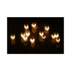 Light Trail Photographs The Firefly Forest ❤ liked on Polyvore