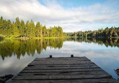 #Repost @stephanmbrunner  Early morning at the Etang de la Gruyère #jura #suisse #suisseromande #switzerland #naturephotography #nature #longexposure #longexposurephotography #nisifilters #ndfilter #fujixt2 #fujifilm_ch #fujifilmx_ch #fujifilm_xseries #xf16mm #etangdelagruère #lake #forest #intothewild #intothewoods #novoflex #notallwhowanderarelost #wanderlust #travel #travelphotography via Fujifilm on Instagram - #photographer #photography #photo #instapic #instagram #photofreak…
