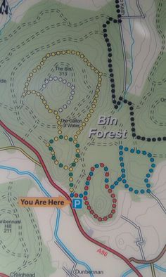 The Bin Forest Walks, Huntly