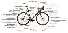 Parliamo dei componenti principali della bicicletta da corsa: http://obiettivofitness.com/componenti-della-bicicletta-da-corsa/