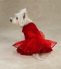Red westie party dress!