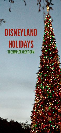 Check out all the Disneyland holiday decor and more! Rides you must ride and all the gorgeous decorations. These tips will ensure you and your kids make the most of the Christmas season at Disney! Winter Crafts For Toddlers, Winter Activities For Kids, Toddler Crafts, Disneyland Tips, Disneyland Park, Travel With Kids, Family Travel, Family Road Trips, Disney Crafts