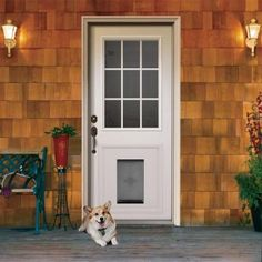 Quot In The Glass Quot The Pet Door Guys System Is A Method Of