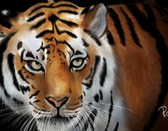"Check out new work on my @Behance portfolio: ""Tiger digital painting"" http://be.net/gallery/51642567/Tiger-digital-painting"