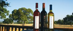 Pedernales Cellars - Texas Premier Boutique Winery near Stonewall  close by 6pm Fri& Sat  noon-5pm Sun (would go again, great patio)