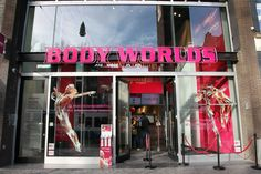 Body Worlds: The Happiness Project - Featured on RueBaRue. What lies unseen beneath the skin is on full view in Body Worlds.