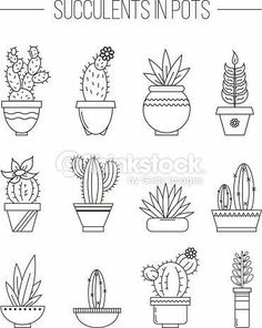 Clipart vectoriel : Set of succulent plants and cactuses in .- Clipart vectoriel : Set of succulent plants and cactuses in pots. Clipart vectoriel : Set of succulent plants and cactuses in pots. Bullet Journal Doodles, Sketch Book, Plant Doodle, Bullet Journal, Hand Lettering, Clip Art, How To Draw Hands, Cactus Drawing, Coloring Pages