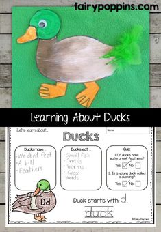 Duck craft template and worksheet activities (labeling, description, writing) - Fairy Poppins Eyfs Activities, Early Learning Activities, First Grade Activities, Animal Activities, Kindergarten Activities, Writing Activities, Kids Learning, Preschool Farm, Duck Crafts