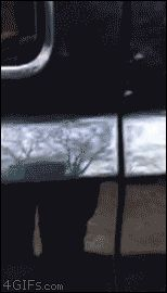Dogs helps nervous friend leave the car http://ift.tt/1O3rc7U