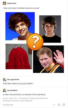 harry, prince, styles, potter, britain, that red thing, british accent, member of the royal family
