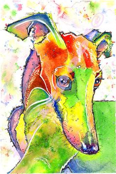 WHIPPET PRINT Picture Lurcher Greyhound Dog Painting Art of Original Watercolour Painting Watercolor Hound Sighthound by Josie P.