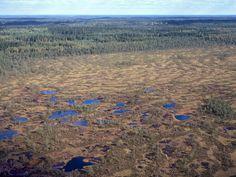 Kurjenrahka National Park. Photo: Lentokuva Vallas Oy.