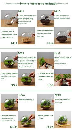 DIY Micro Landscape Plant Glass Hanging Ball With Iron Rack Home Decor