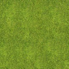 Texture seamless grass