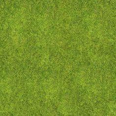Texture seamless grass                                                       …
