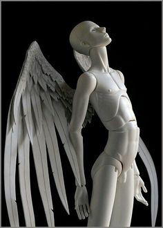 Wings bjd