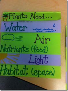 Foldable plant needs