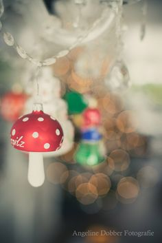 Advent Photo Day 15 - Ornament   - Angeline Dobber Fotografie