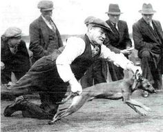 Whippet Racing. Canning Town, London, England. A dock worker throwing his dog to ensure a good start to the race.