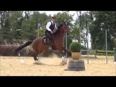 Working Equitation vorbereitende Übungen - YouTube