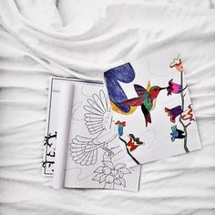 """When your Saturday looks like this... Relaxing and staying in bed coloring out of our """"Birds of the World"""" book for the evening"""