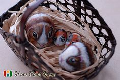 Guinea Pigs family, hand painted stone