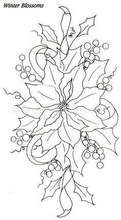 Poinsettia: