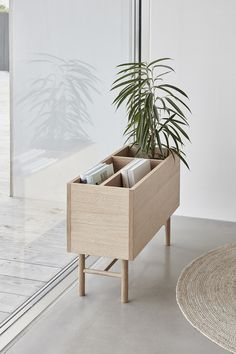 Beautiful natural indoor oak planter perfect for storage of plants, books or vinyl records. A clever piece of design.