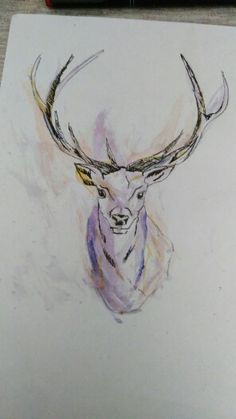 Deer watercolor tattoo, cervo acquarello tattoo ink