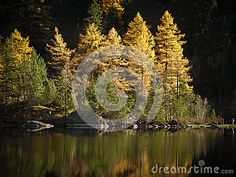 This photograph was taken in the shores of Lake Derborence which is part of a beautiful natural park somewhere in the Swiss Alps Parque Natural, Natural Park, Swiss Alps, Stock Foto, Photograph, Celestial, Nature, Outdoor, Beautiful