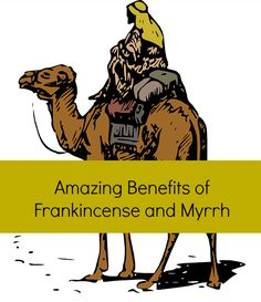 Frankincense Myrrh Essential Oil Benefits