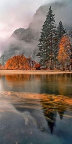 Rain Leaves swirl at sunset in a light November rain on the Merced River in Yosemite Village. What a beautiful fall travel idea.Leaves swirl at sunset in a light November rain on the Merced River in Yosemite Village. What a beautiful fall travel idea. Beautiful World, Beautiful Places, Beautiful Pictures, Nature Pictures, Amazing Places, Beautiful Gorgeous, Absolutely Gorgeous, Wonderful Places, Travel Pictures
