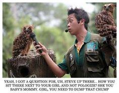Owl talk show