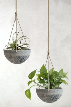 hanging herb gardens Best Hanging Planters 2020 / Hanging Planters Indoor / Outdoor / From Ceiling / Wall / Pots / Ceramic / Galvanized / Metal / Small Hanging Planters Outdoor, Succulent Hanging Planter, Indoor Outdoor, Macrame Hanging Planter, Hanging Flower Pots, Herb Planters, Concrete Planters, Flower Planters, Hanging Plants