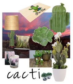 """""""Prickly decor"""" by drusilla-s on Polyvore featuring interior, interiors, interior design, home, home decor, interior decorating, Holly's House, Dot & Bo, succulents and cacti"""