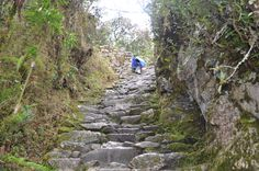 The Inca Trail Machu Picchu 2 days is ideal for people who do not have time to explore the full Inca Trail. Machu Picchu, Trail, Hiking, Tours, Explore, Walks, Trekking, Hill Walking, Exploring