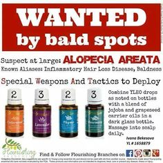 Young Living Essential Oils: Alopecia Hair