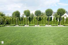 na Słonecznej - Ogród, styl minimalistyczny - zdjęcie od kamila_lbn Hillside Garden, Garden Paving, Back Garden Design, Backyard Garden Design, Modern Landscaping, Backyard Landscaping, Privacy Trees Fast Growing, Simple Landscape Design, Thuja
