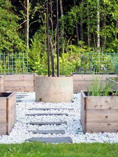 Hyötypuutarhaa Go Outside, Sweet Dreams, Garden Plants, Interior And Exterior, Snapchat, Garden Design, Lily, Backyard, Landscape