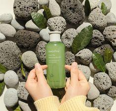 No photo description available. Camellia Oil, Korean Products, Innisfree, Celebrity Beauty, K Beauty, Flawless Skin, Korean Skincare, Skin Care, Green