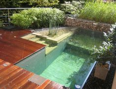 Pool Designs For Small Backyards | librarygeekwoes