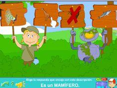 Mamíferos, reptiles, aves, insectos, anfibios y peces para Primer Ciclo de Primaria #animales #primaria #juegos #niños