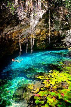 Gran Cenote Tulum,Mexigo.
